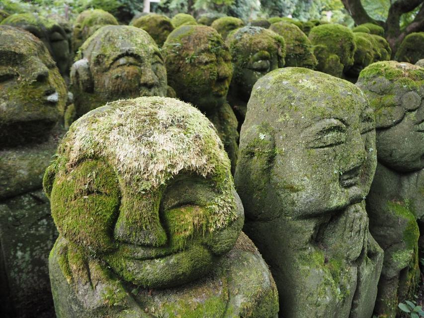 【どこがお好み?】アジアで出会った色んなお寺 3 南アジアから日本